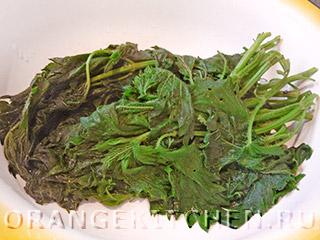 Вегетарианская вермишель с крапивой: Фото 1